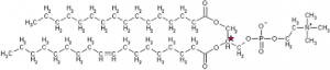Triglycerid.kiral